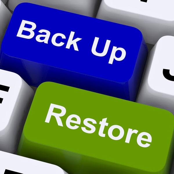 Social Solutions SA Back up and Restore